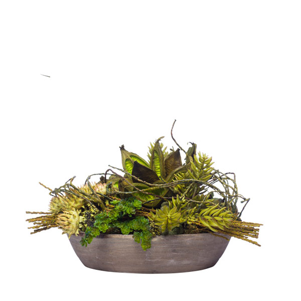 DRIED STAR POD/SUCCULENTS IN WOOD BOWL