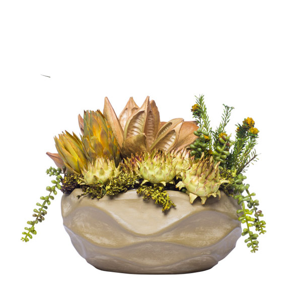 DRIED/SUCCULENTS IN ROUND WAVY BOWL