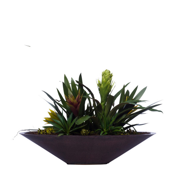 MIXED BROMELIADS IN BROWN OVAL