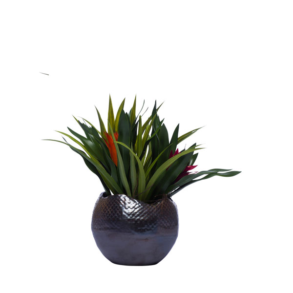 BROMELIAD/GRASS IN BRONZE POT