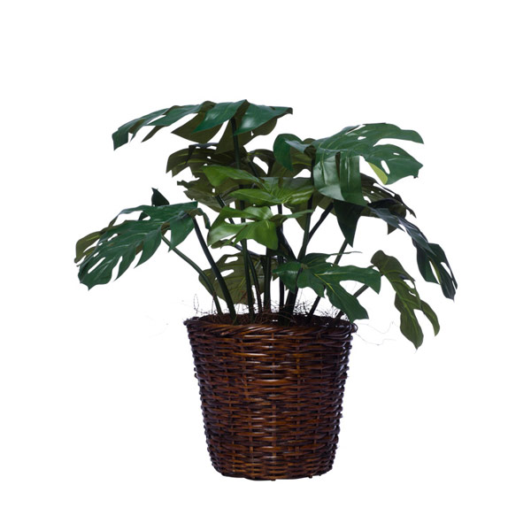 SPLIT LEAF BASKET