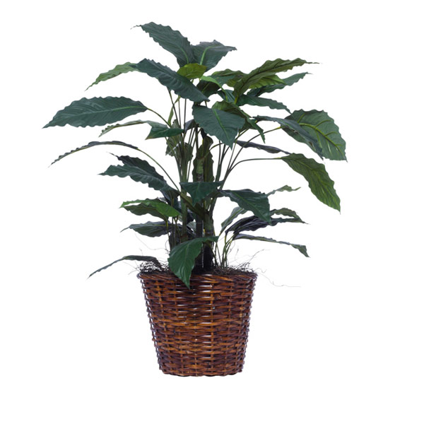 SMALL SPATH PLANT BASKET
