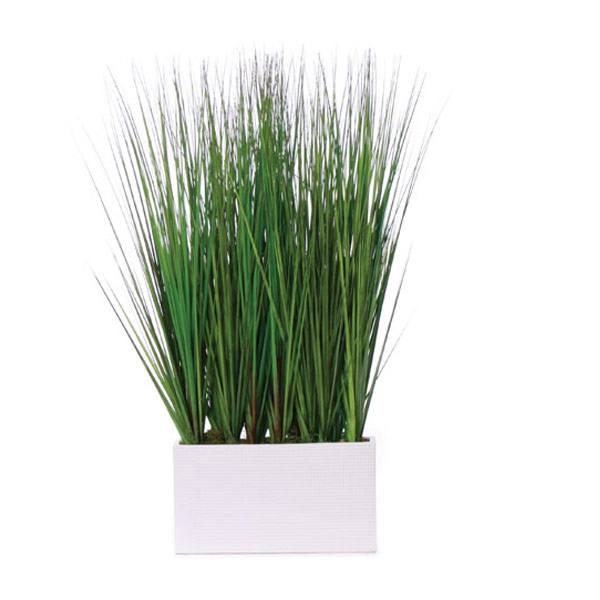 Grass in a White Rectangle Container