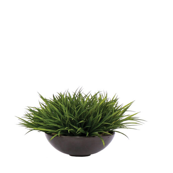 Grass in Black Metalic