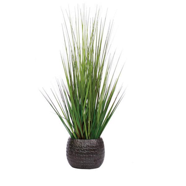 Grass in a Medium Black Pot