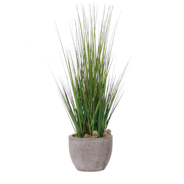 Grass in a Large Cement Pot