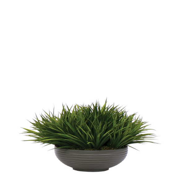 Grass in a Grey Round Bowl