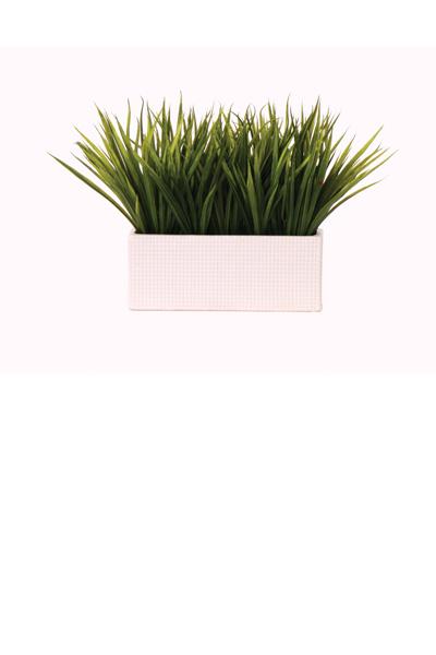 Sword Grass in Large White Ceramic