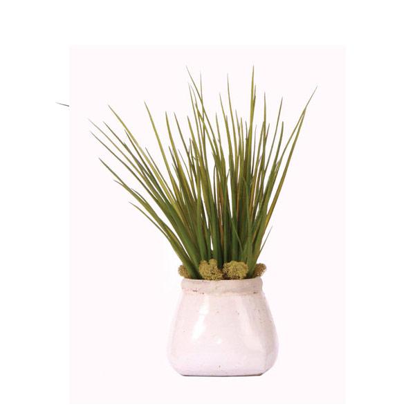 GRASS IN WHITE STONE POT