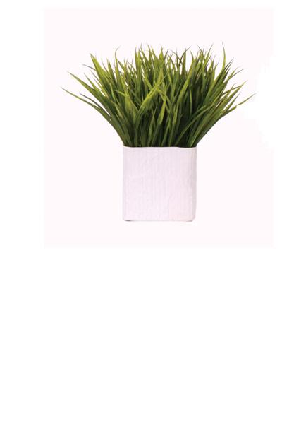 Grass in Medium White Ceramic