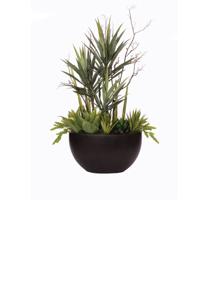 Lg. Yucca / Snake / Agave in Black Terrazzo
