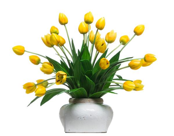 Yellow Tulips in Ceramic Pot