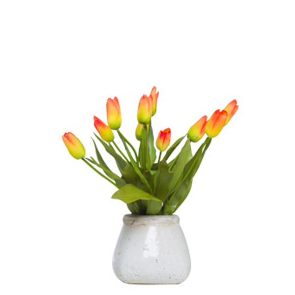 Orange Small Bud Tulips in Stone Pot