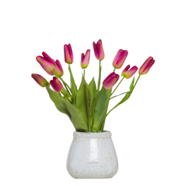 Fuchsia Small Bud Tulips in Stone Pot
