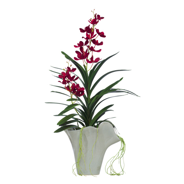 Red Phalaenopsis and Succulent in Grey Pot