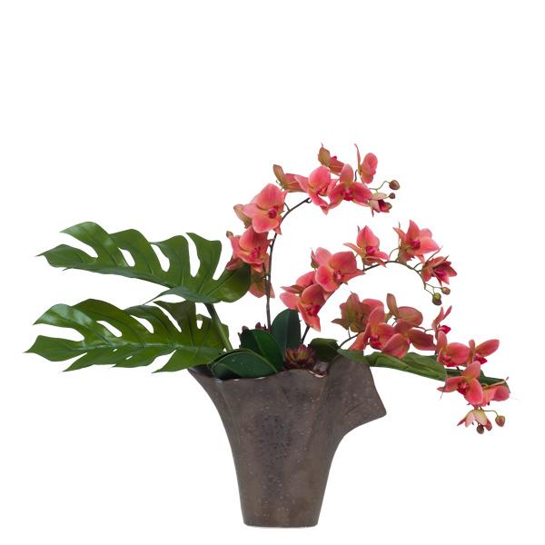 Succulent/Phalaenopsis in Bronze Vase