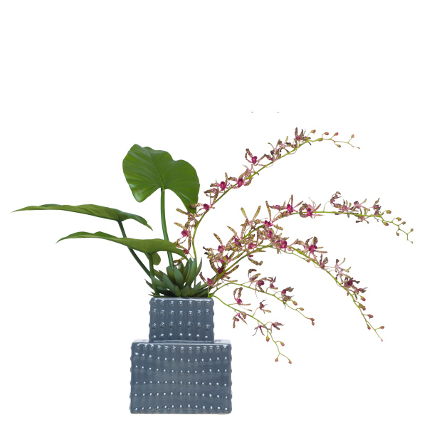 Spider Vanda in Grey Tower Vase