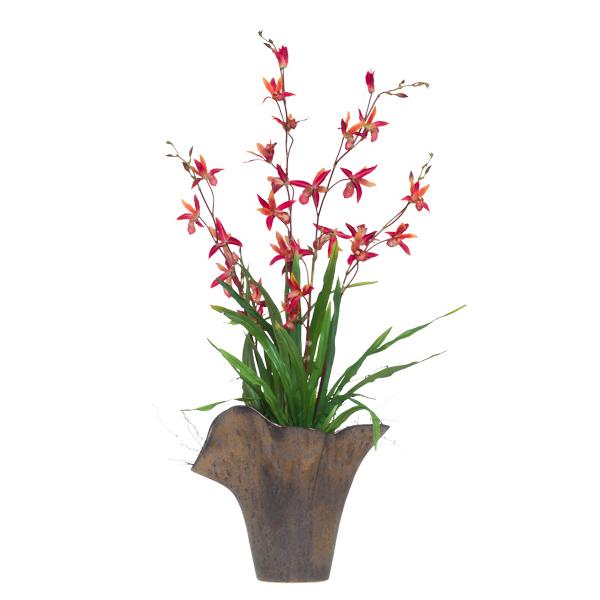 Rust Dendrobium in Ruffle Vase
