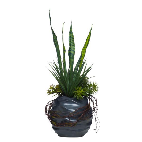 Succulents in Wavy Black Pot
