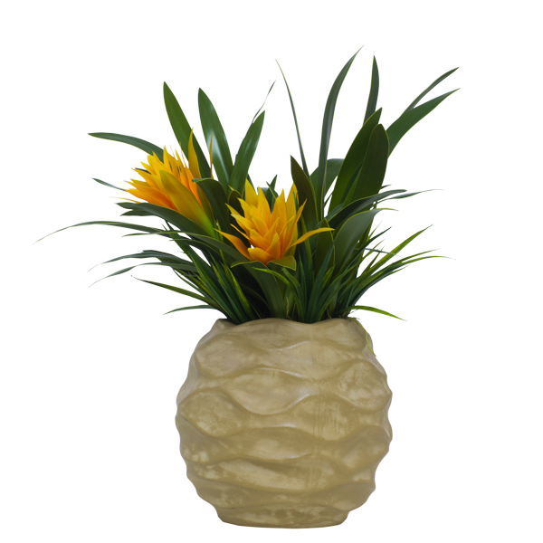 Bromeliad in Tall Wavy Beige Container