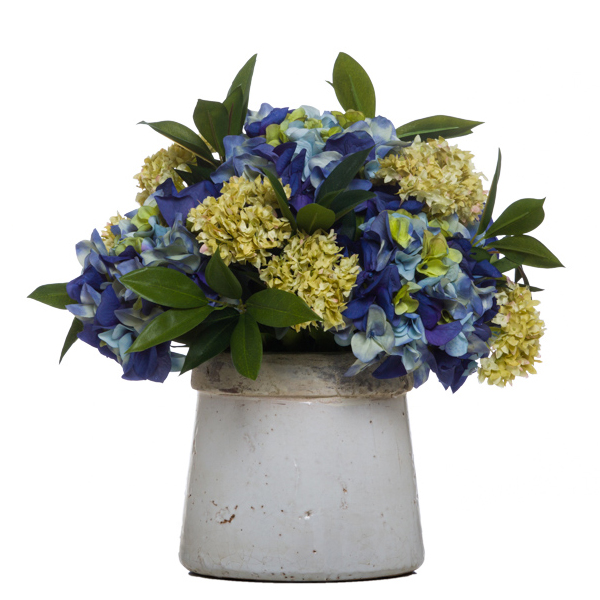 Blue Hydrangea in Stone Pot