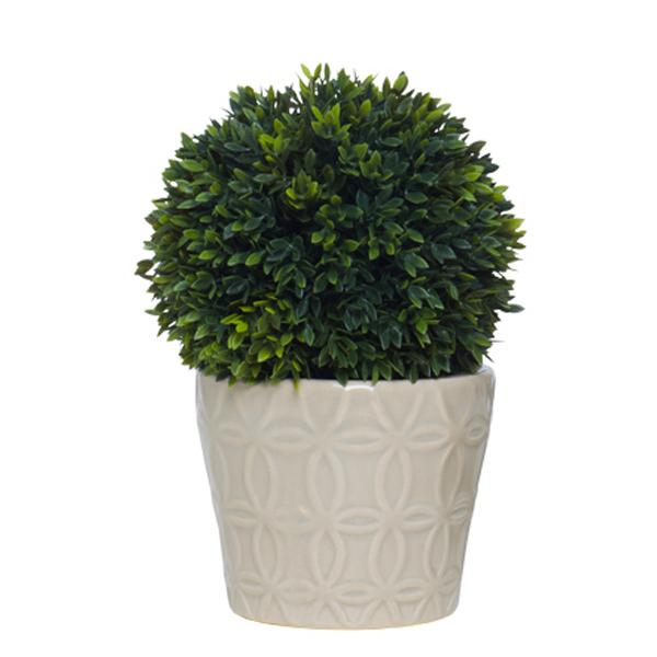 Mini Boxwood Ball in Grey Isigna Pot