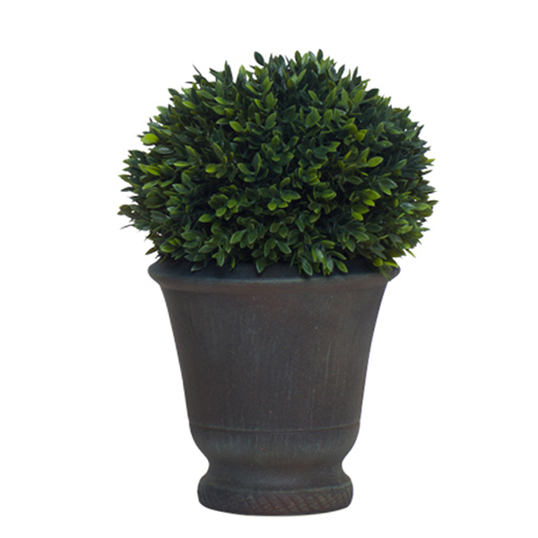 Mini Boxwood Ball in Sm. Urn