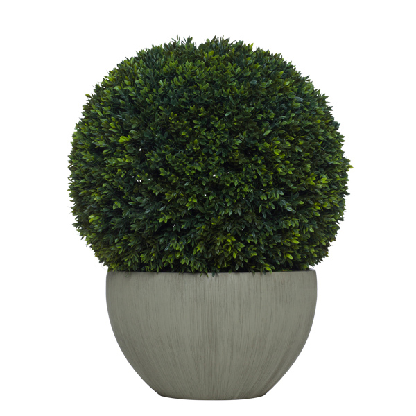 Topiary Mini Boxwood Ball in Taupe Bowl