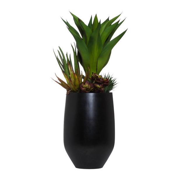 Succulent in Tall Terrazzo Pot
