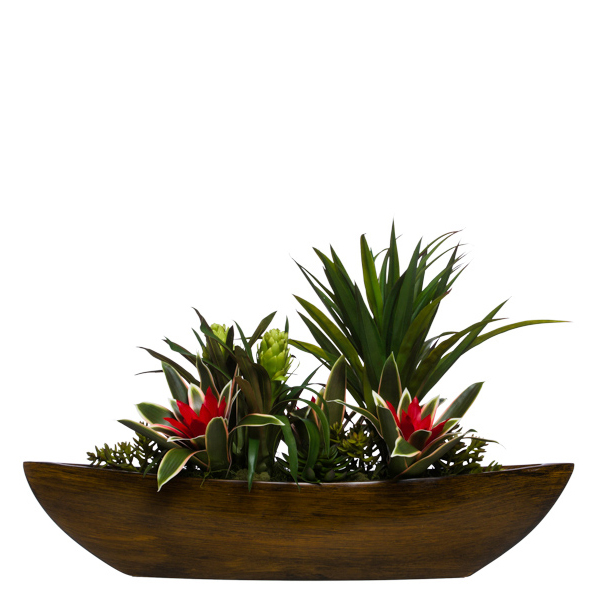 Yucca/Assorted Succulents in Large Boat