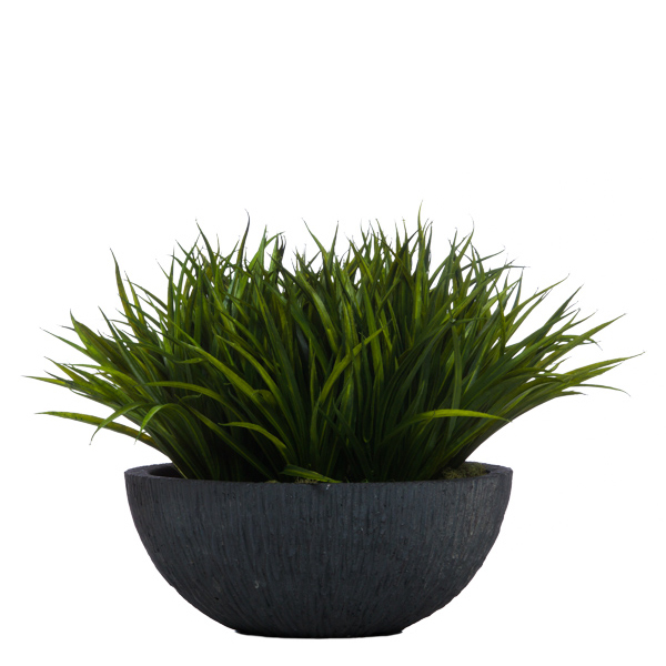 Grass in Sm. Black Bowl