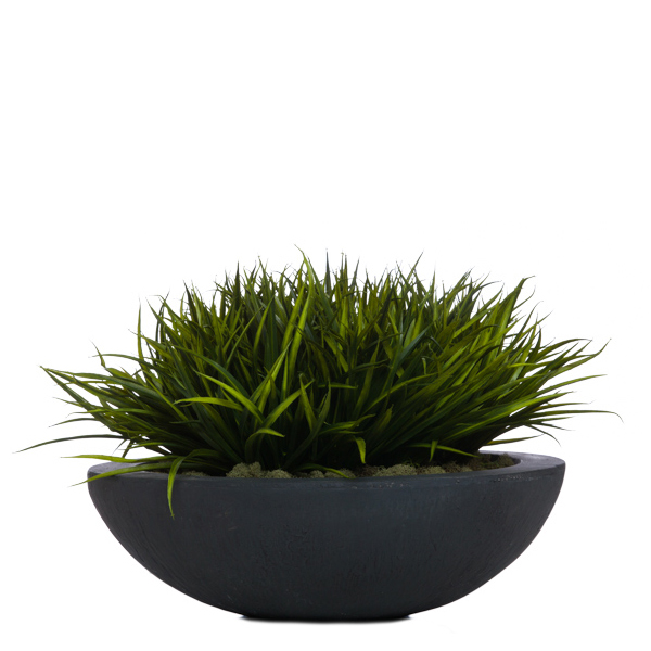 Grass in Lg. Black Bowl
