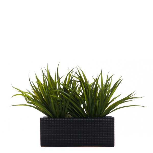 Grass in Black Rectangle Container