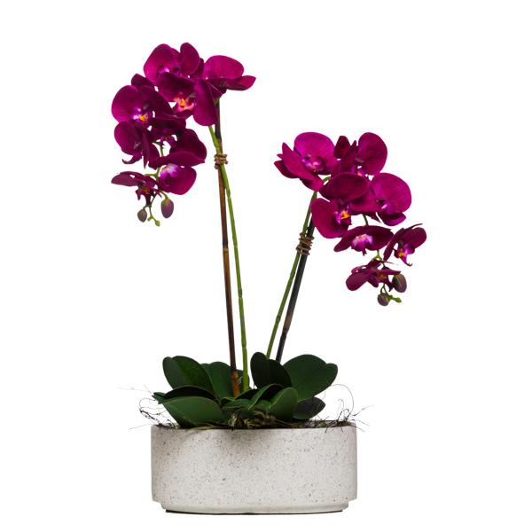 Double Fuchsia Phalaenopsis in Sm. Oval Terrazzo Bowl