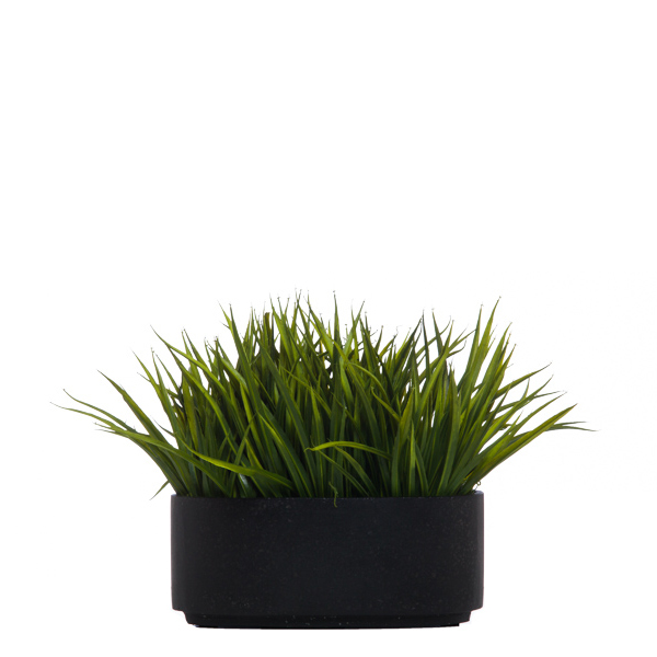 Sm. Grass in Black Oval Bowl