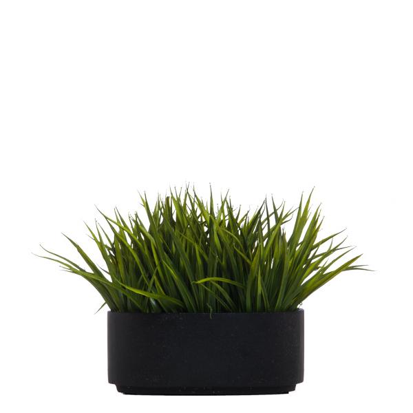 Sm. Grass in Black Oval Bowl