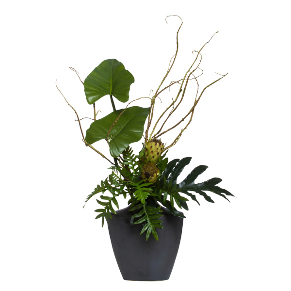 Protea/Tropical in Black Dakota Vase