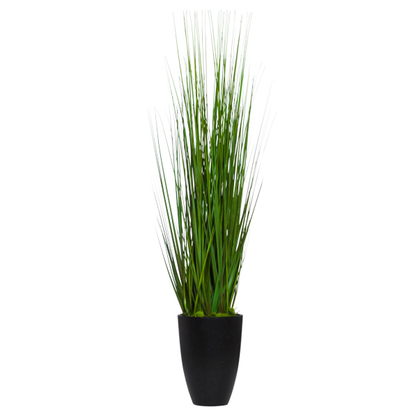 Grass in Black Cylinder