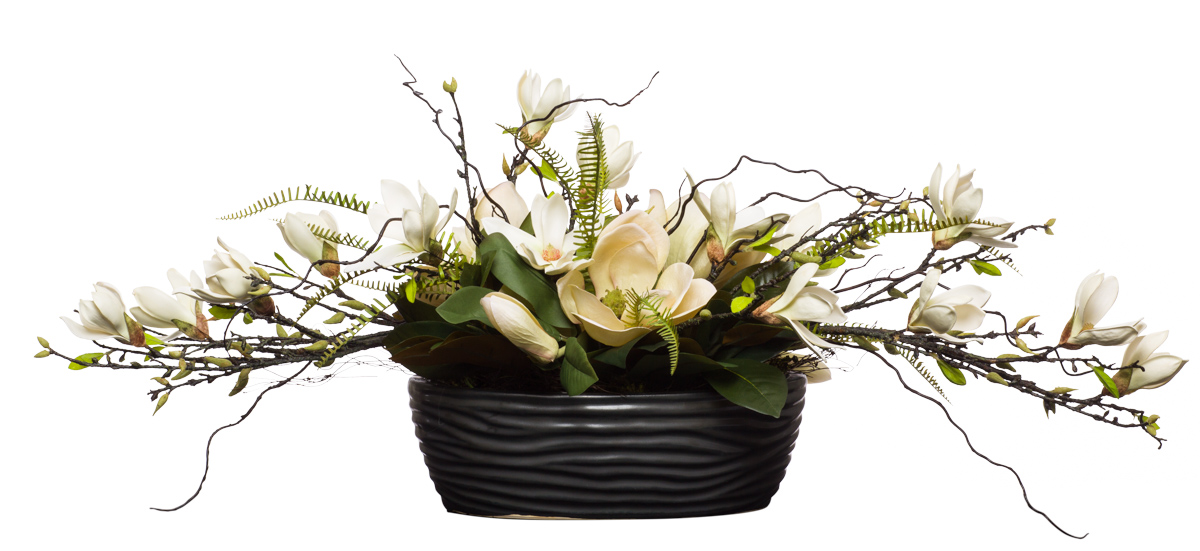 Cream Magnolia in Black Oval Bowl