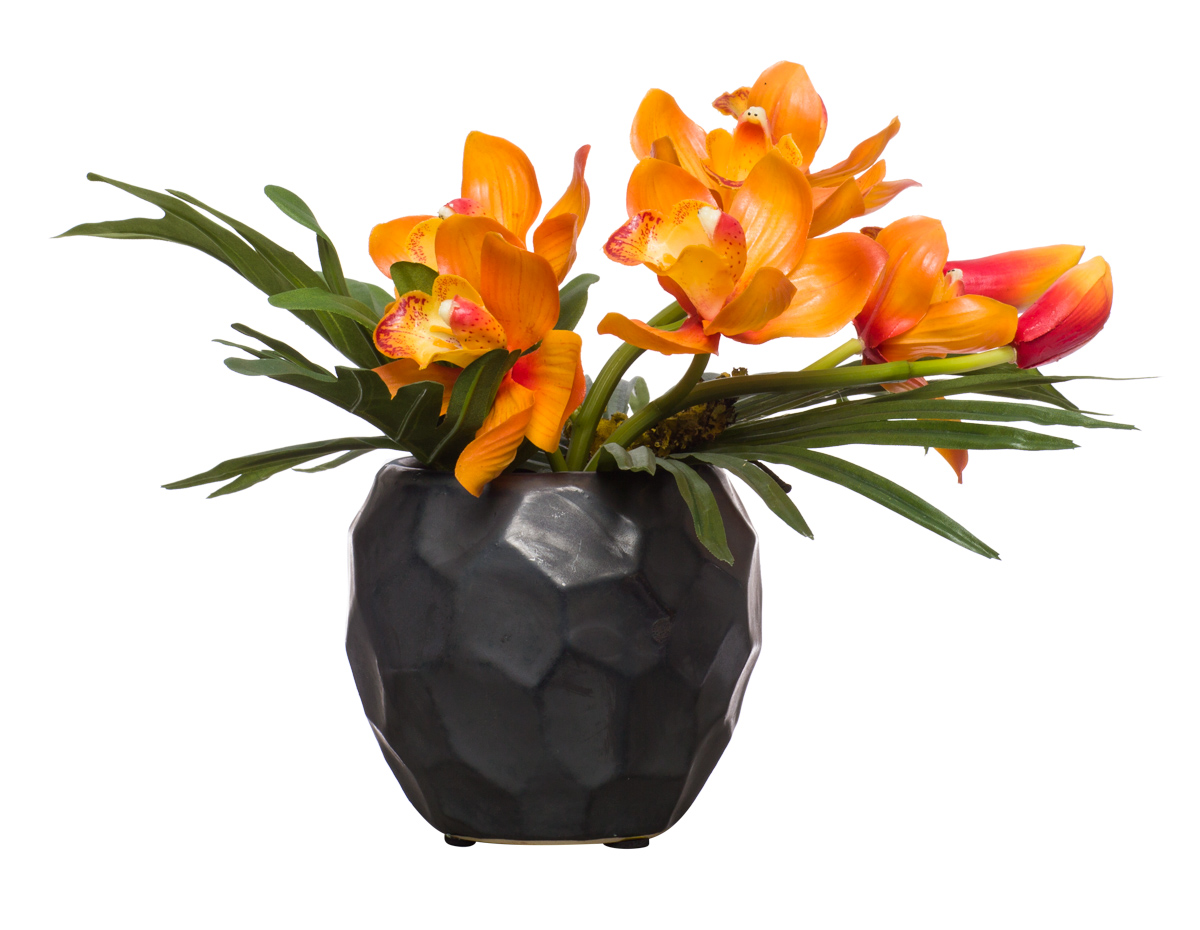 Orange Cymbidium & Philo in Black Chipped Pot