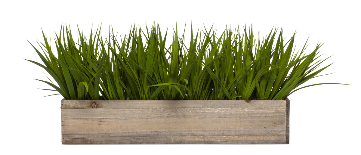 Wall Hanging w/ Grass in Long Wood Box
