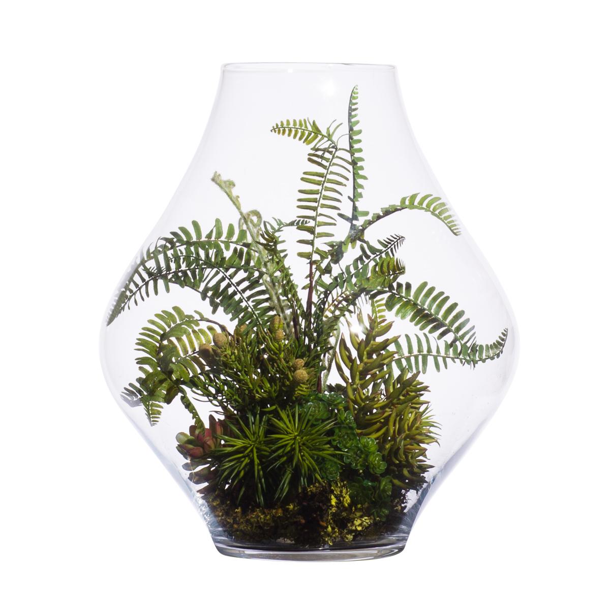 Succulent Fern Bromiliad in Large Terrarium Vase