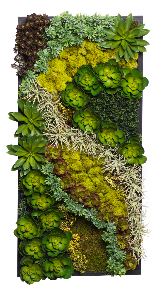 Succulent Wood Frame Center