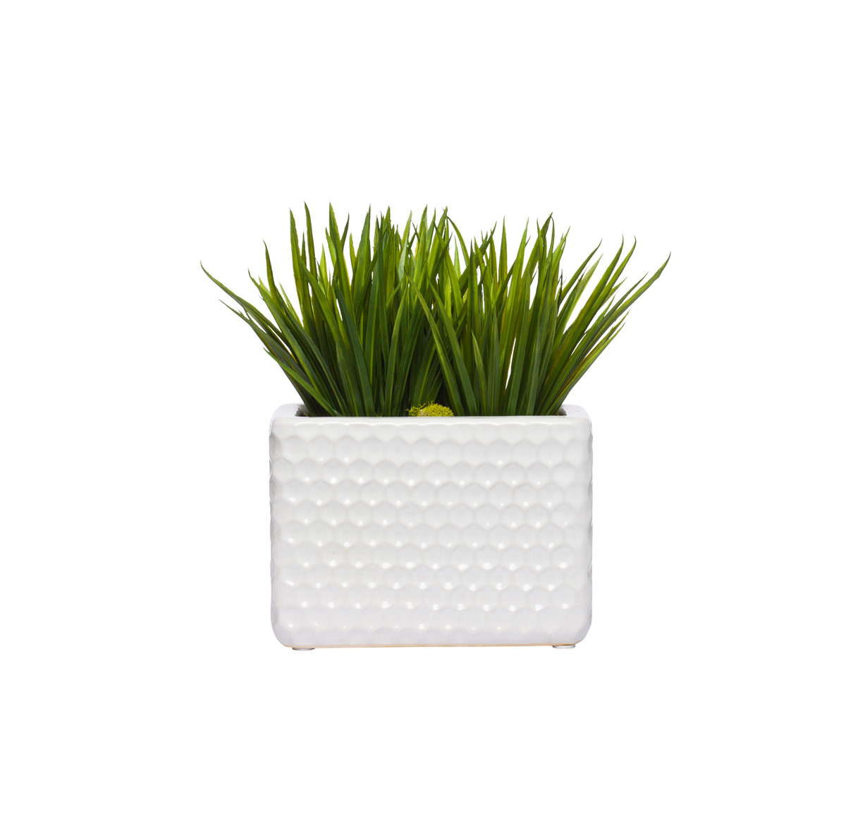 Grass in White Large Honeycomb Planter