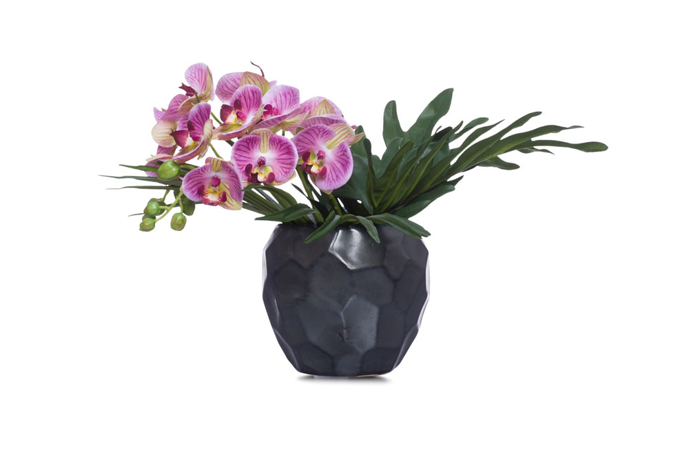 Lavender Phal In Small Black Pot