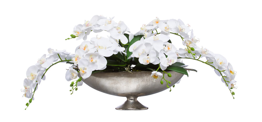 White Phal Centerpiece in Small Silver Boat