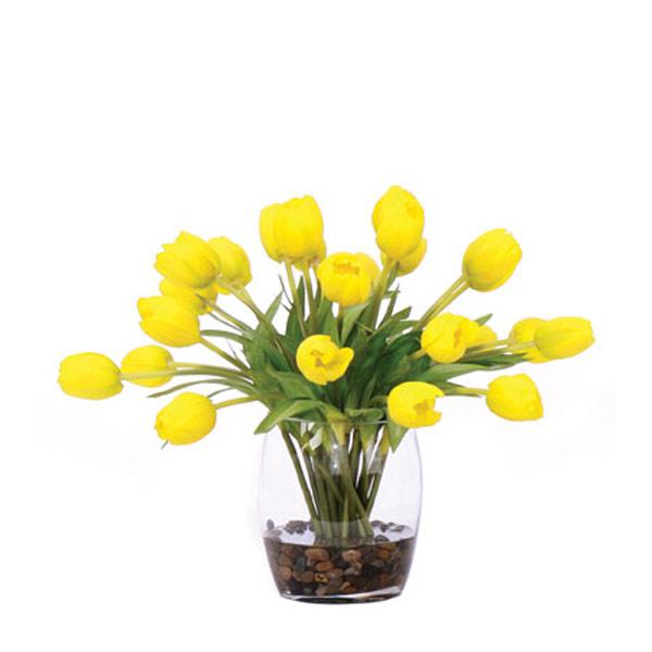 Yellow Tulip Waterlike