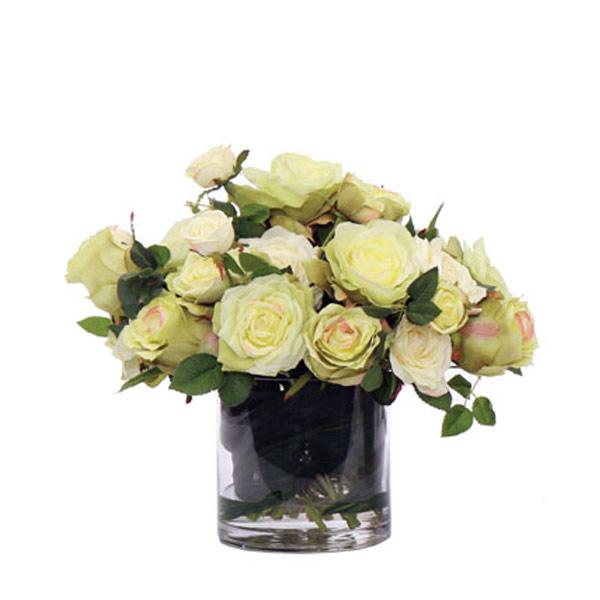 Cream Rose Waterlike