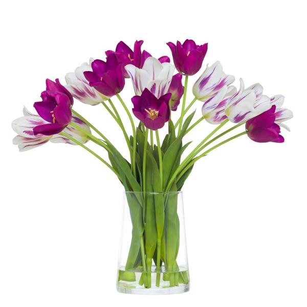 Mixed Tulips in Vase Waterlike