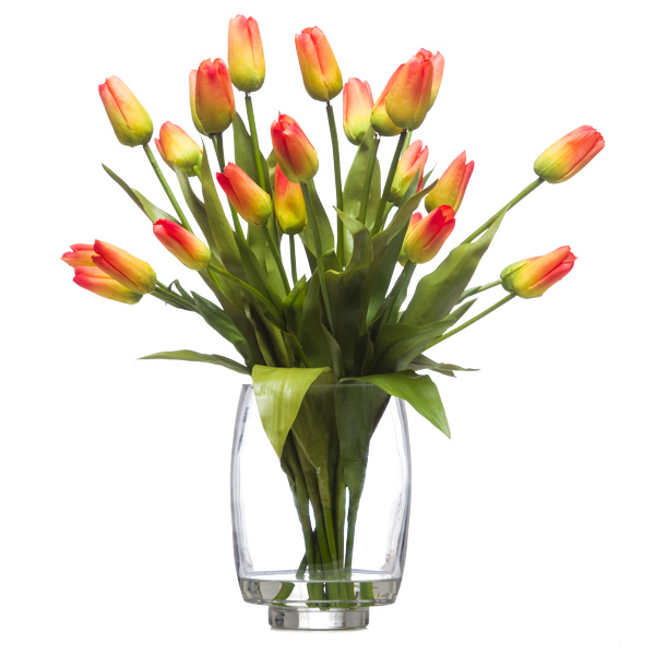 18 Orange Tulips Waterlike